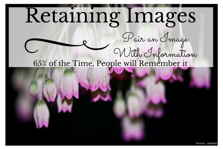 Retaining Images
