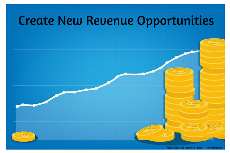 Create New Revenue Opportunities