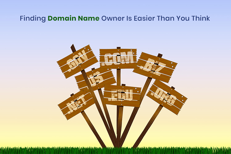 Finding Domain Name Owner