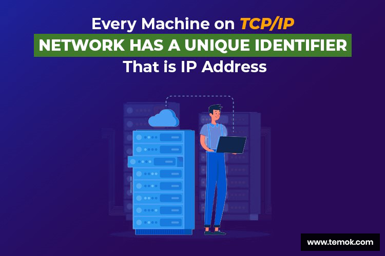 Networking IP Addresses