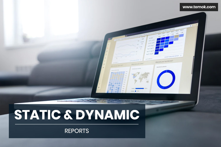 Static And Dynamic Reports
