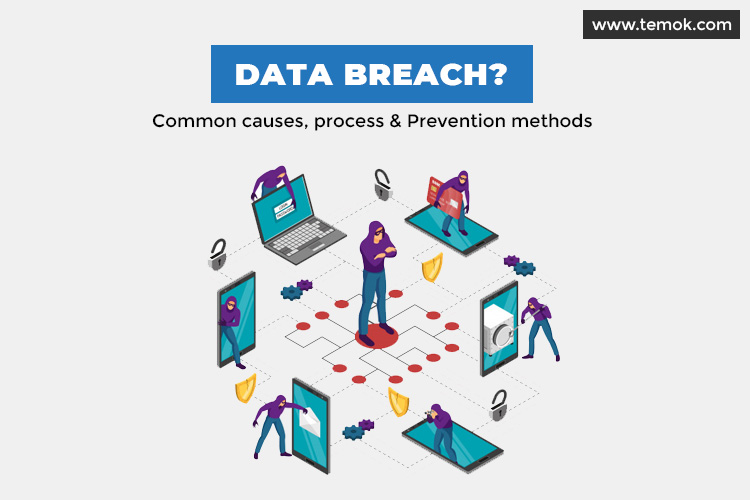 Data Breach: Common Causes, Process and Prevention Methods