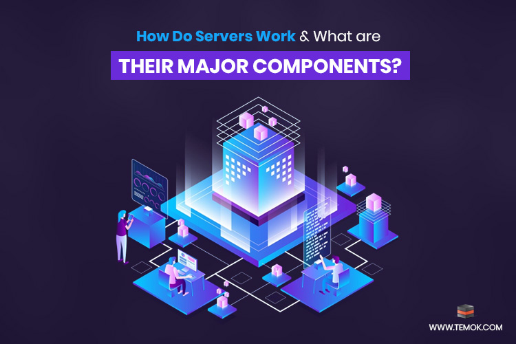 How Do Servers Work and What are Their Major Components?