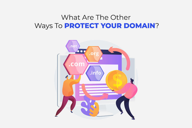 What Are The Other Ways To Protect Your Domain?