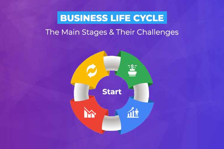 Business Life Cycle: The Main Stages and Their Challenges