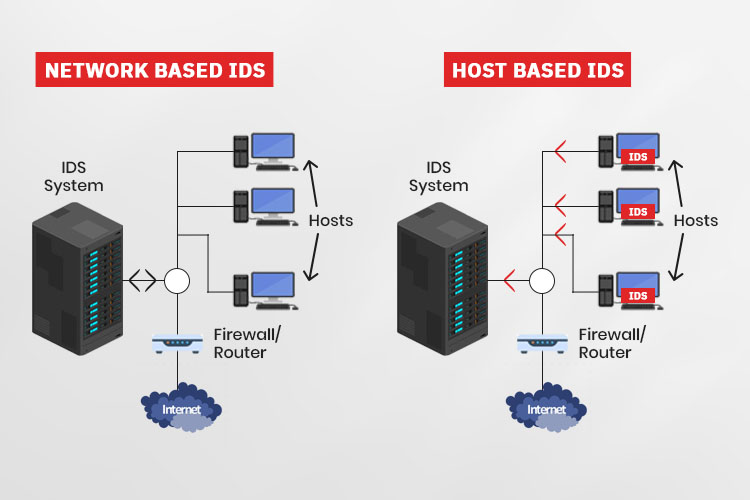 Network Based IDs and Host based IDs