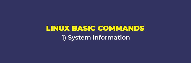 Linux Basic Commands: System Information