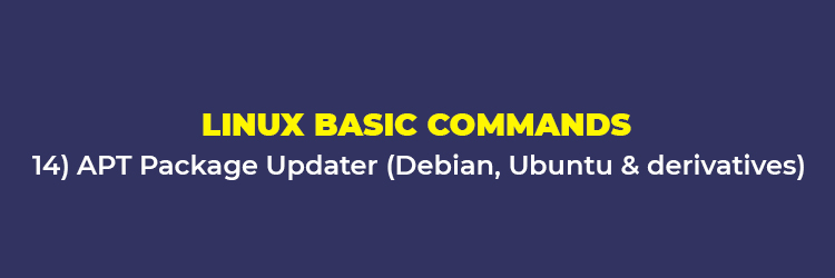 Linux Basic Commands: APT Package Updater (Debian, Ubuntu and derivatives)