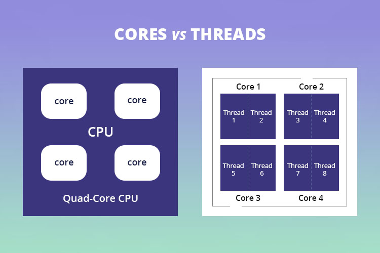 Cores vs Threads