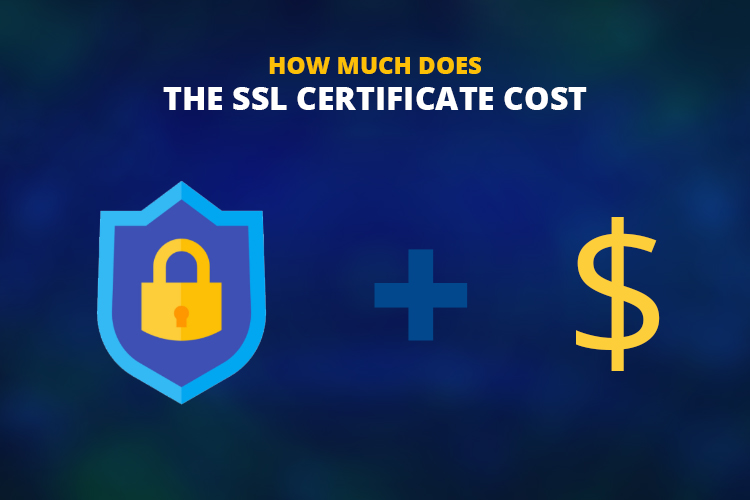 How Much Does the SSL Certificate Cost?