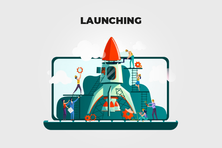 Web Project Management: Launching the website